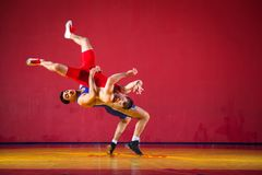 Two strong wrestlers. In blue and red wrestling tights are wrestlng and making a making a hip throw on a yellow wrestling carpet in the gym. Young men doing royalty free stock images