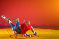 Two young men  wrestlers. Two strong wrestlers in blue and red wrestling tights are wrestlng and making a suplex wrestling on a yellow wrestling carpet in the Royalty Free Stock Photos