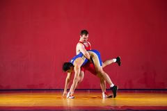 Two strong wrestlers. In blue wrestling tights are wrestlng and making a suplex wrestling on a yellow wrestling carpet in the gym. Young men doing grapple Royalty Free Stock Photo