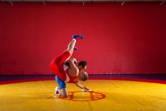 Two strong wrestlers. In blue and red wrestling tights are wrestlng and making a suplex wrestling on a yellow wrestling carpet in the gym. Young men doing Stock Photography