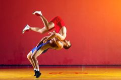Two strong wrestlers. In blue wrestling tights are wrestlng and making a suplex wrestling on a yellow wrestling carpet in the gym. Young men doing grapple Royalty Free Stock Image