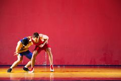 Two strong wrestlers. In blue wrestling tights are wrestlng and making a suplex wrestling on a yellow wrestling carpet in the gym. Young men doing grapple Stock Images