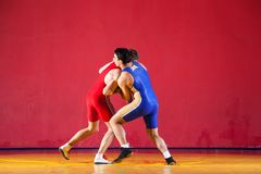 Two strong wrestlers. In blue wrestling tights are wrestlng and making a suplex wrestling on a yellow wrestling carpet in the gym. Young men doing grapple stock photography