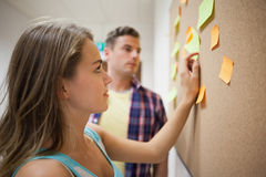 Two students looking at notice board Royalty Free Stock Image