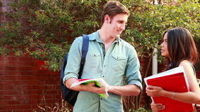 Two students standing and chatting. On college campus stock footage