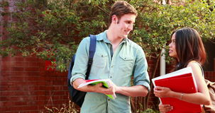 Two students standing and chatting. On college campus stock video
