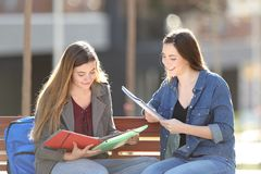 Two students studying reading notes in a park stock photo