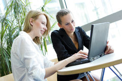 Two students working Royalty Free Stock Photo