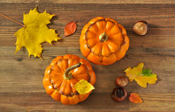 Two stuffed pumpkin Royalty Free Stock Images