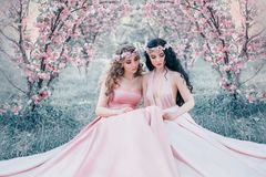 Two stunning elf are sitting in the fabulous cherry blossom garden. Princesses in luxurious, pink dresses. Blonde and royalty free stock image