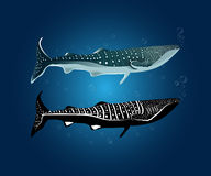 Two style of Whale shark with water bubble. ( Normal color and Silhouette Royalty Free Stock Photos
