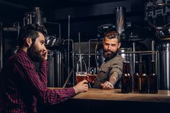 Two stylish bearded hipsters friends drinking craft beer together at the indie brewery. royalty free stock photo