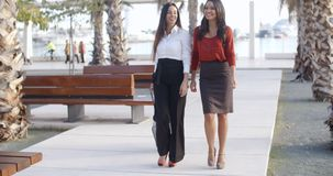 Two stylish elegant women walking together stock video