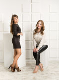 Two stylish girls posing in studio against wall Stock Image
