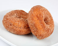 Two Sugared Doughnuts. On a white plate Royalty Free Stock Photos