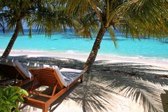 Sun loungers under palm trees on a beach in the Maldives. Two sun lounger chairs sit on the beach of a tropical island in the Maldives. The chairs are in the royalty free stock photo