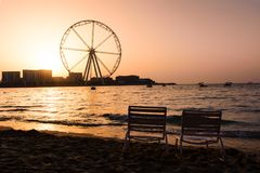 Two sunbeds with Ain Dubai ferris wheel view at JBR beach. At sunset Stock Photos