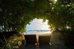 Two sunbeds at a spot in beach hidden by trees facing the ocean. royalty free stock photos