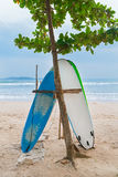 Two surf boards on sandy Weligama beach in Sri Lanka Stock Photos