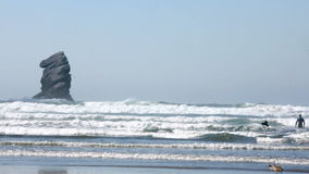 Two surfer at Morro Bay, California in the water stock footage