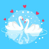 Two swan swimming fall in love couple marriage symbol decorative Stock Images