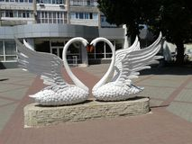 Two swans as a symbol of fidelity and love stock photography