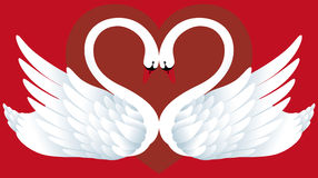 Two Swans in Love. Abstract background with two swans and heart Royalty Free Stock Photography