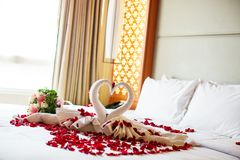 Two swans made from towels are kissing on honeymoon white bed. Creamy pillow and heart form, valentine signature made from red rose flower on bed decoration in Royalty Free Stock Image