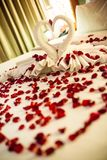 Two swans made from towels are kissing on honeymoon white bed.  Stock Images