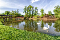 Two swans on river Danube and watermill and bridge in Kolarovo, Royalty Free Stock Photos