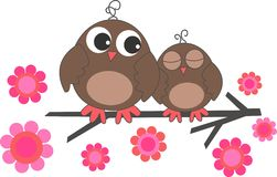 Two sweet brown owls Stock Photography