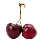 Two sweet cherries . Stock Photos