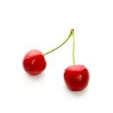 Two sweet cherries Royalty Free Stock Photo