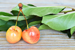 Two sweet cherries with leaves Royalty Free Stock Photos