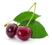 Sweet cherries with stem and leaves. royalty free stock photo