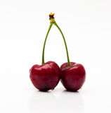 Two sweet cherries on white background Royalty Free Stock Image