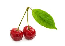 Two sweet cherry Royalty Free Stock Images