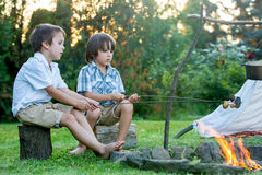 Two sweet children, boy brothers, camping outside summertime on Royalty Free Stock Images