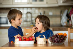 Two sweet children, boy brothers, eating fresh fruits at home Royalty Free Stock Photos