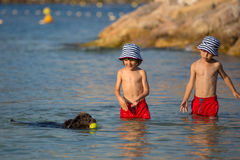 Two sweet children, boys, playing with dog on the beach. Summertime Stock Photos