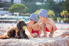 Two sweet children, boys, playing with dog on the beach Royalty Free Stock Images
