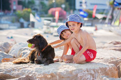 Two sweet children, boys, playing with dog on the beach. Summertime Stock Images