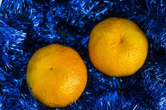 Two sweet, juicy mandarin lie on blue Christmas tinsel. Two sweet, juicy mandarin lie on blue Christmas tinsel royalty free stock photography