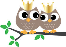 Two sweet owls with golden crowns Stock Photography