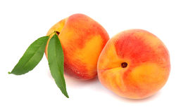 Two sweet peaches with leaves Royalty Free Stock Image