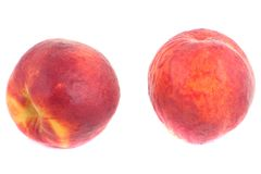 Two sweet peaches with water drops Royalty Free Stock Photos