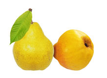 Two sweet pears isolated on white background Stock Image