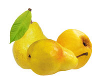 Two sweet pears isolated on white background Royalty Free Stock Photos