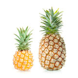 Two Sweet Pineapples Stock Photography