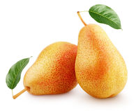 Two sweet red yellow pear fruits Royalty Free Stock Photography